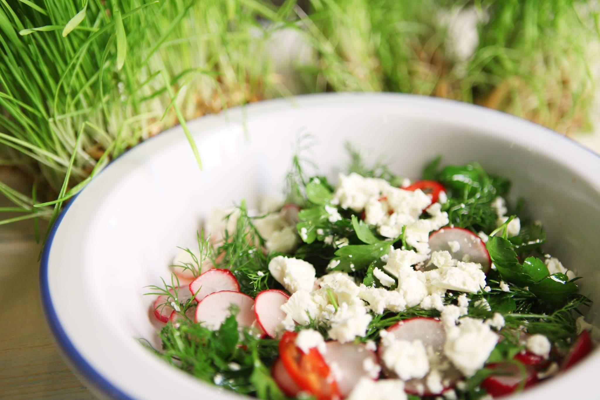 Весенний салат с редисом и зеленью